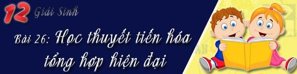 bai 26 sinh 12 hoc thuyet tien hoa tong hop hien dai
