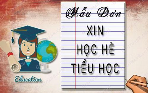 don xin hoc he tieu hoc