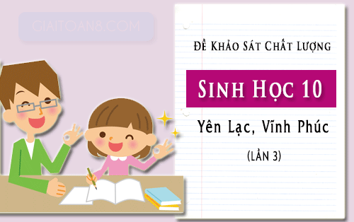 de khao sat sinh hoc 10 lan 3 truong yen lac vinh phuc nam 2019 2020